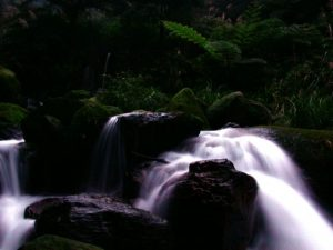 jinshan travel baian Wild stream springs 01 1