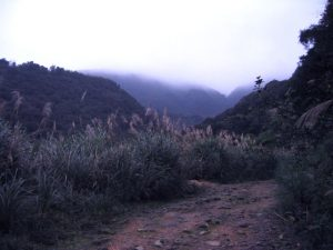 jinshan travel baian Wild stream springs 06 1